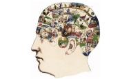 视频游戏与空间认知 Video Games and Spatial Cognition